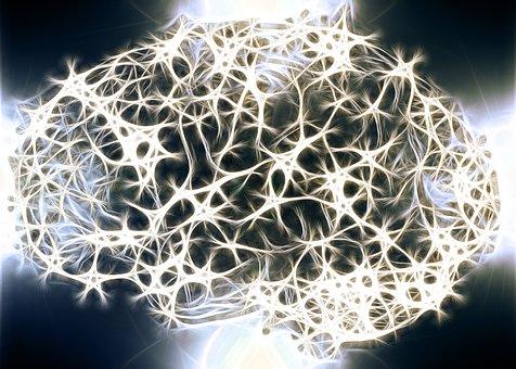 Yo soy yo y mis conexiones neuronales