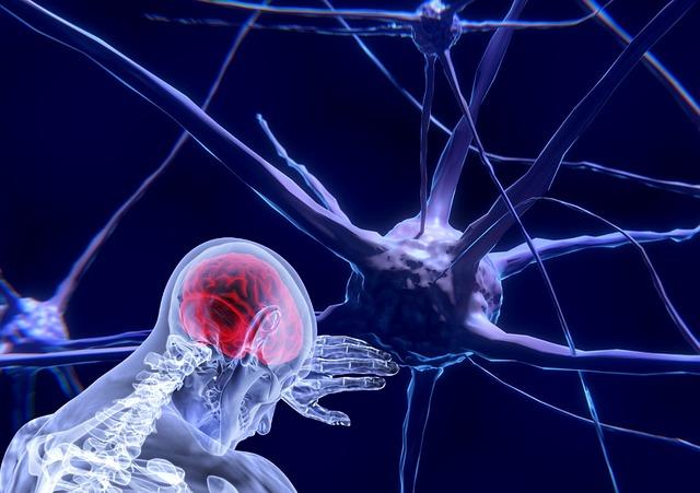 Serotonina, neurotransmisor de la felicidad